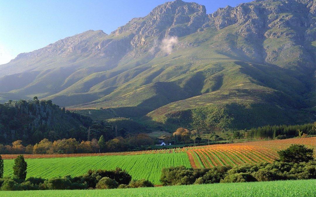 All About Africa; Stellenbosch, South Africa